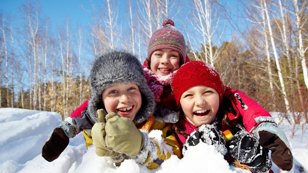 Winter_Snow_Three_3_511916_1920x1080