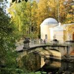 Zolotaya-osen-v-Pavlovsko